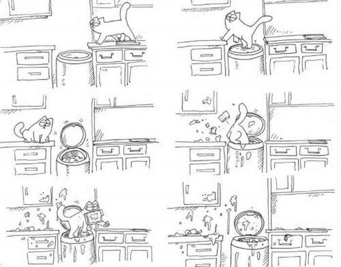 Приключения кота Симона (12 фото)