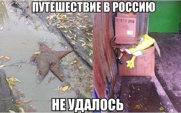 Картинки со смешными подписями (33 фото)