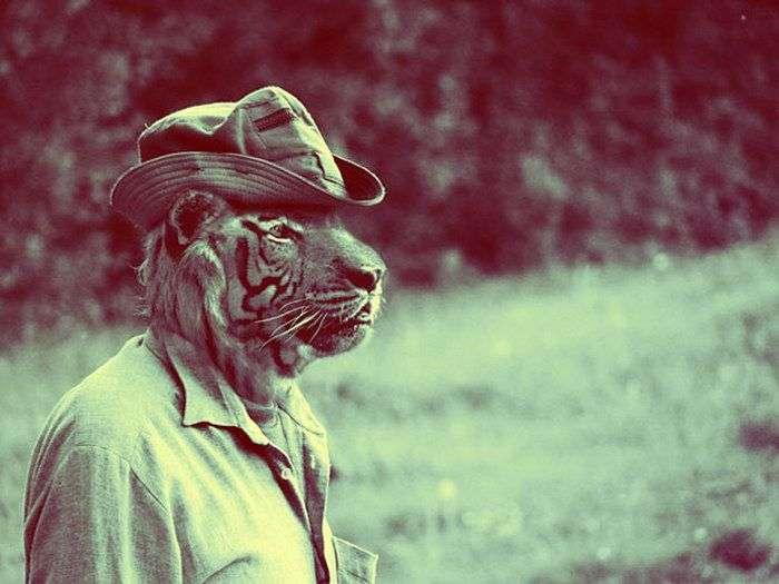 Животные в костюмах людей (6 фото)
