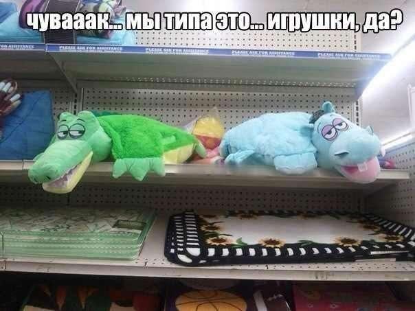 Подборка прикольных фото №951 (122 фото)