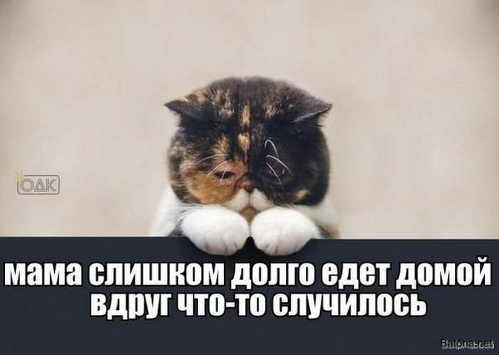 Подборка комиксов и приколов №176 (35 картинок)