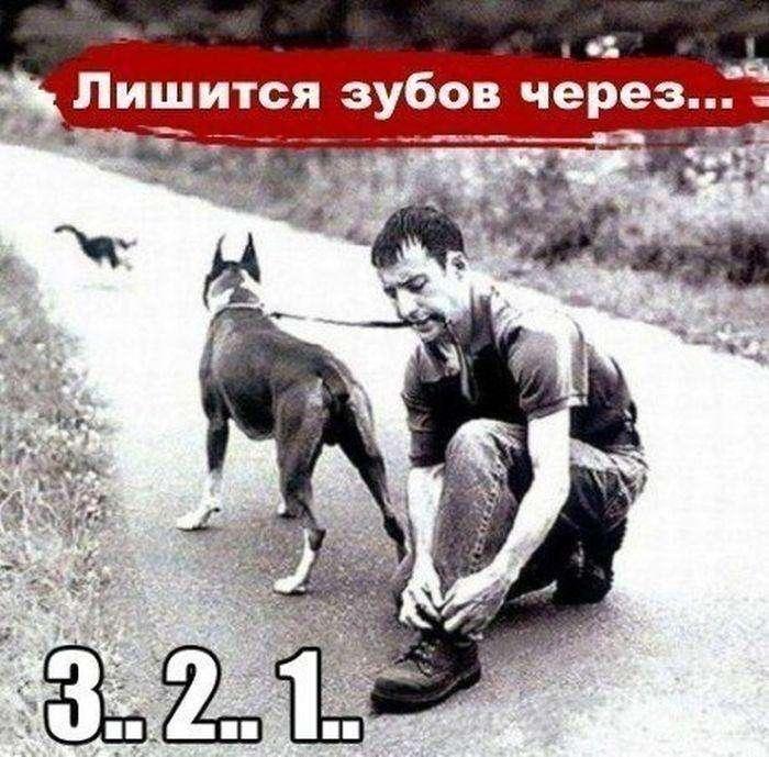 Подборка прикольных фото №954 (101 фото)