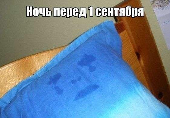 Картинки со смешными подписями (38 фото)