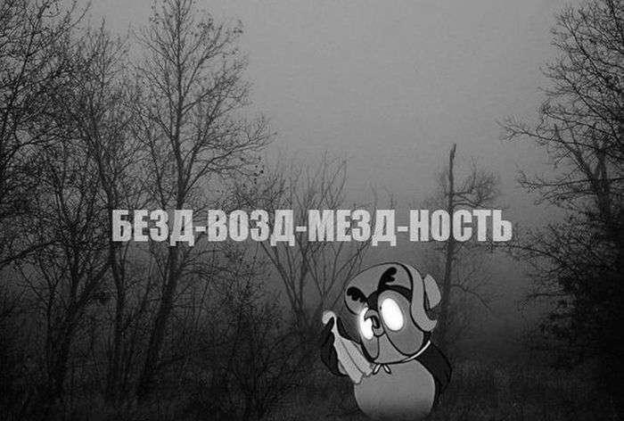 Подборка прикольных фото №955 (92 фото)