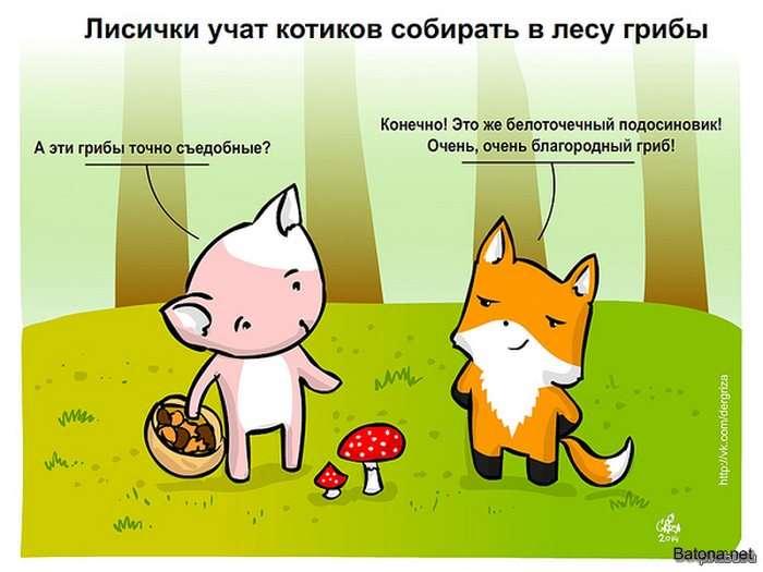 Подборка комиксов и приколов №181 (35 картинок)