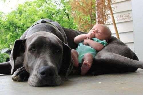 Вам не с кем оставить ребёнка? (23 фото)