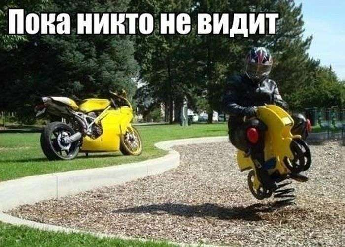 Подборка прикольных фото №959 (105 фото)