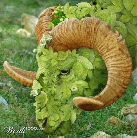 Креативные растительные образы животных (25 фото)