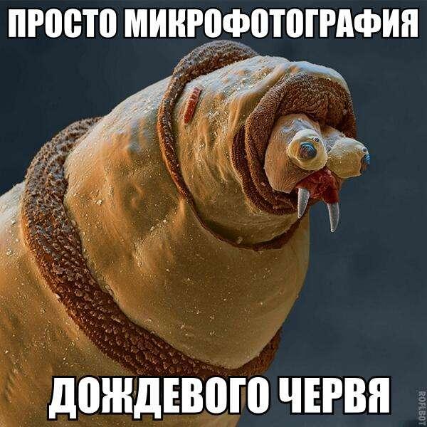 Подборка прикольных фото №969 (113 фото)