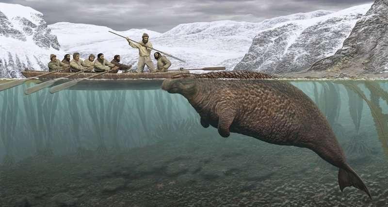 10 животных, которые исчезли с лица Земли по вине человека животные,природа