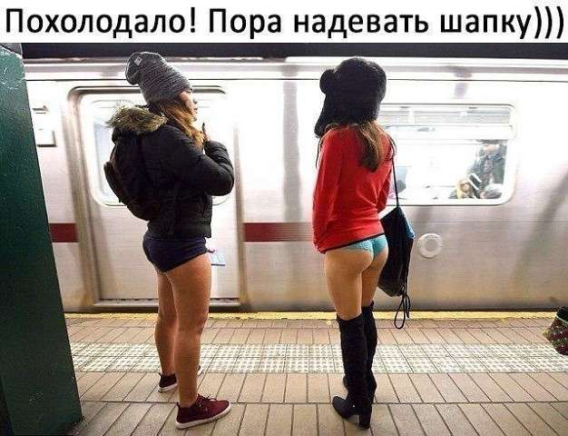 — А что, мужик, метро в вашем городе есть?… Юмор,картинки приколы,приколы,приколы 2019,приколы про
